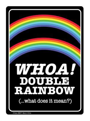 """Double Rainbow Tin Sign - 8 1/2"""" X 11.75"""""""