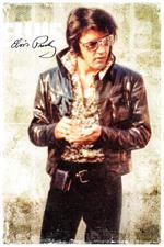 Elvis Presley - Cool - Poster - 24