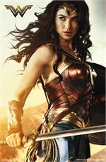Wonder Woman - Shield - 22.375