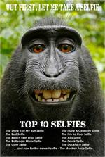 TOP TEN SELFIES - MONKEY SELFIE POSTER - 24