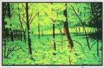 Summer Woods Black Light Poster - 35