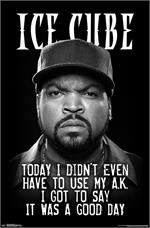 Ice Cube Poster - 23