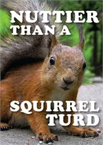 Nuttier Than A Squirrel Turd Tin Sign - 8 1/2