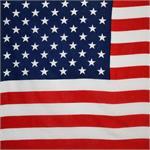 US Flag Bandana 21