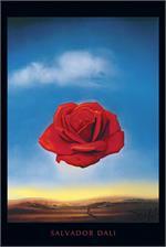 The Meditative Rose Poster Image
